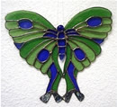 Abalone Butterfly